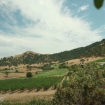 Winery Corporate Video Production